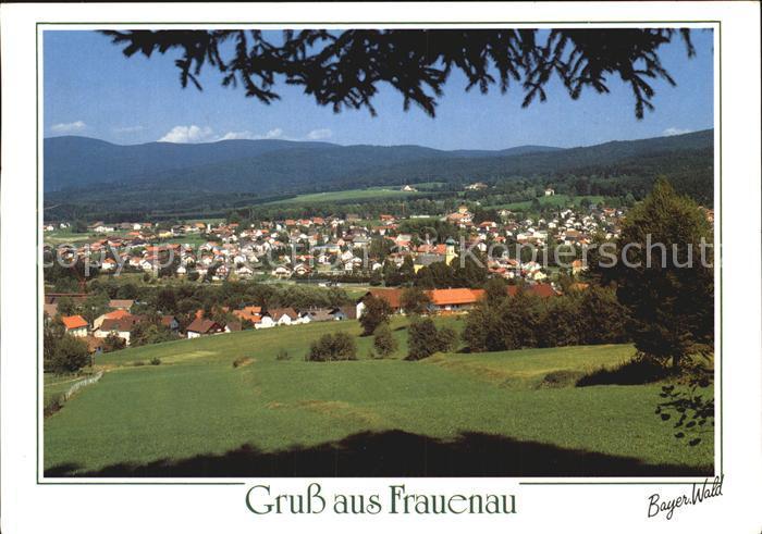 Frauenau Panorama Kat. Frauenau