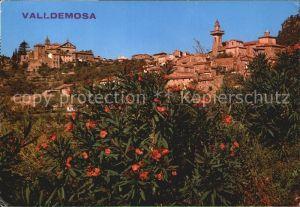 Valldemosa Panorama Kat. Valldemosa Mallorca
