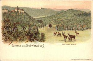 Schwarzburg Thueringer Wald Panorama Blick von der Terrasse Wild Kat. Schwarzburg