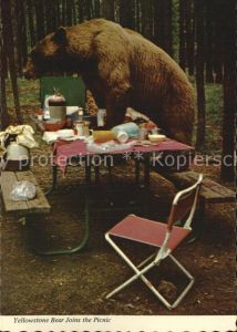 Yellowstone National Park Bear Joins the Picnic Kat. Yellowstone National Park