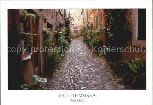 Valldemosa Gasse Kat. Valldemosa Mallorca