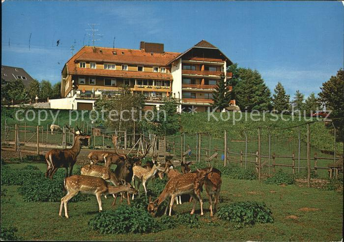 Haeusern schwarzwald wildpark hotel cafe waldlust kat for Schwarzwald design hotel