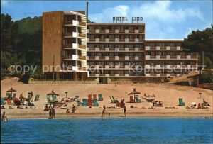 Camp de Mar Hotel Lido Kat. Andratx Mallorca