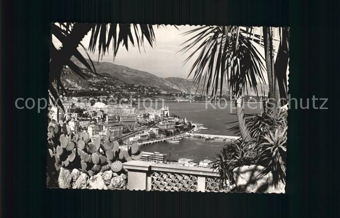 Monte Carlo Panorama  Kat. Monte Carlo