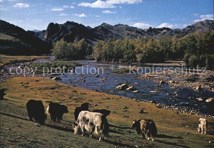 Mongolei Bogdyn Gol River Zabhan Aimak Kat. Mongolei