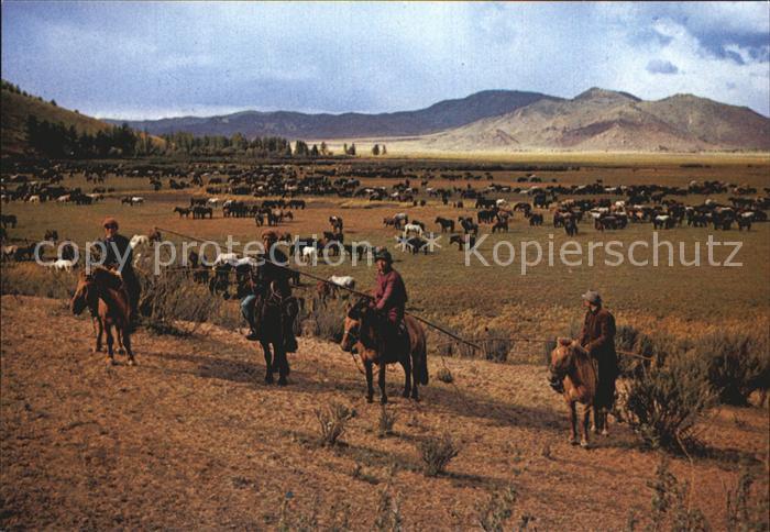 Mongolei Herdsmen with Lasso Kat. Mongolei