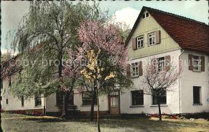 Merkenfritz DAK Jugendgesundungsstaette Haus Henkel Kat. Hirzenhain