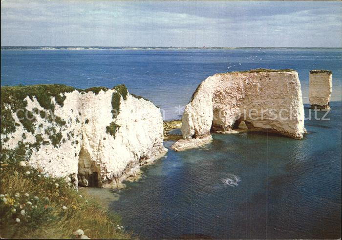 Studland Old Harry Rocks Kat. Isle of Purbeck