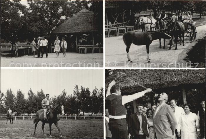 Ungarn Toek Pferde Folklore