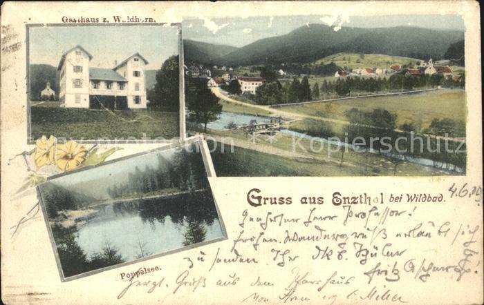 Wildbad Schwarzwald Enzthal Poppelsee Gasthaus Waldhorn Kat. Bad Wildbad