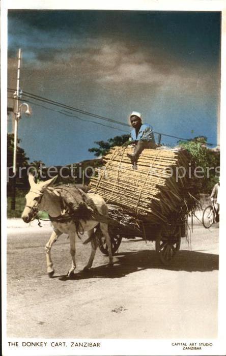Zanzibar The Donkey Cart Kat. Zanzibar