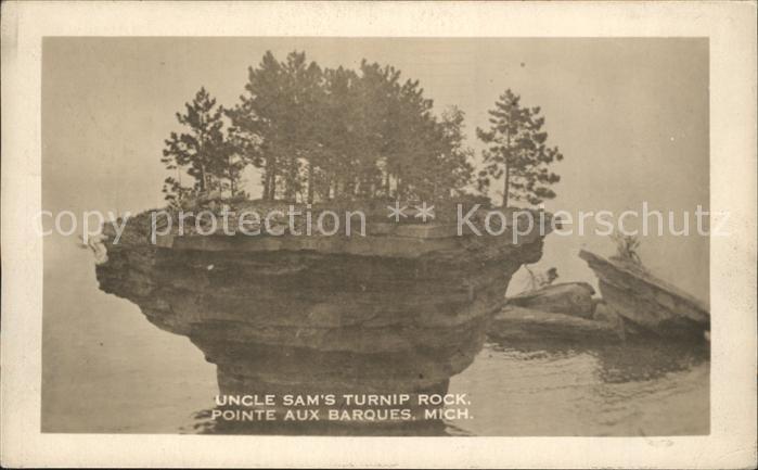 Michigan US State Uncel Sams Turnip Rock