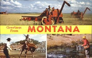 Montana US State Whet Harvester Rodeo Fishing