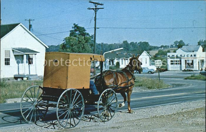 Pennsylvania US State Amish horse and buggy