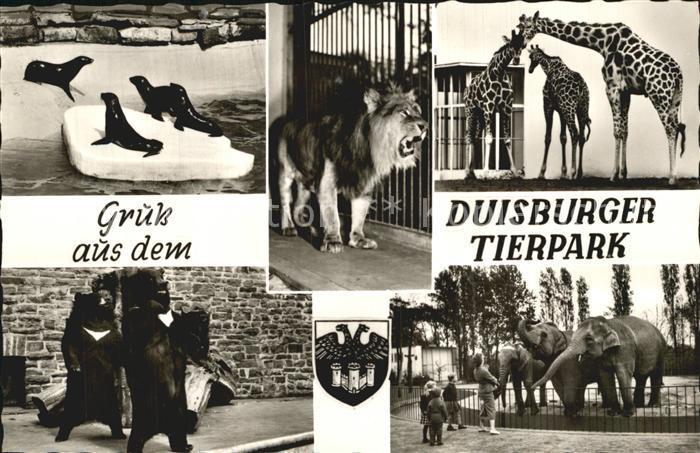 Zoo Duisburg Tierpark Loewe Giraffen Elefanten Robben Braunbaeren  Kat. Tiere