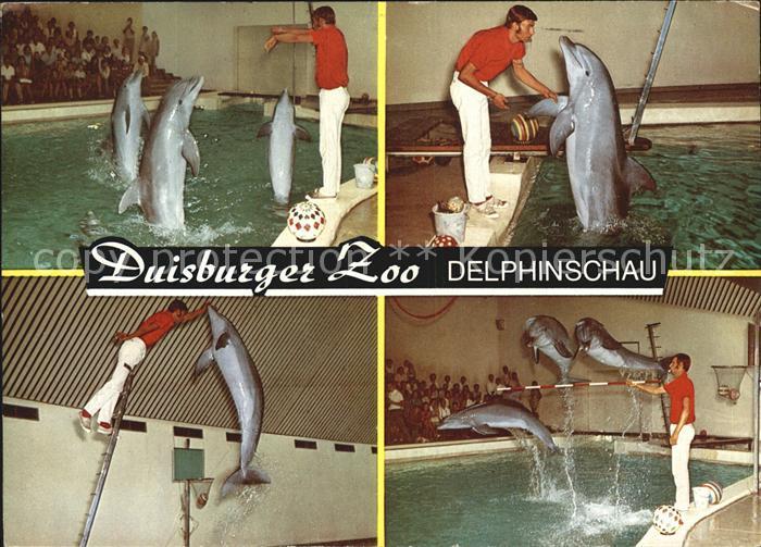 Delphine Duisburg Zoo Delphinschau  Kat. Tiere