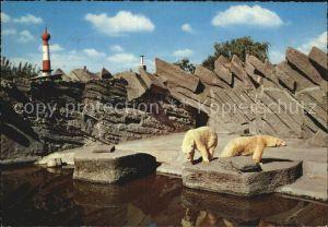 Eisbaer Bremerhaven Tiergrotten  Kat. Tiere