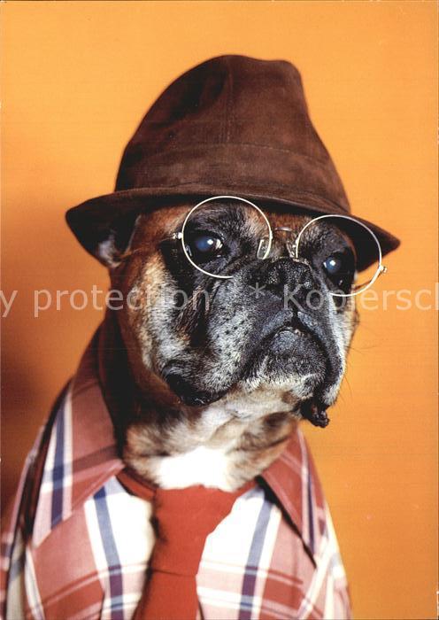 Vermenschlicht Hund Hut Brille Krawatte Hemd Kat. Kuenstlerkarte