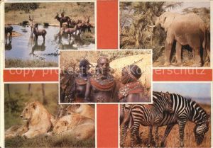 Typen Afrika Loewen Zebras Elefanten
