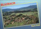 Bild zu Blaibach Fliegera...