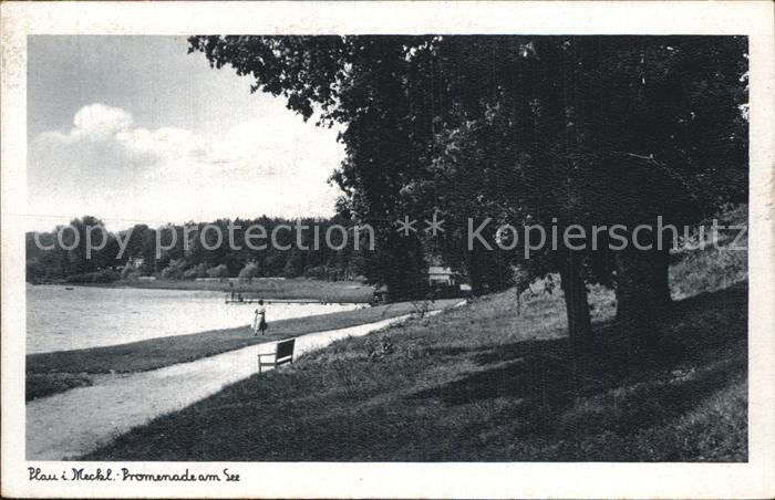 Plau Mecklenburg Promenade See Kat. Plau See