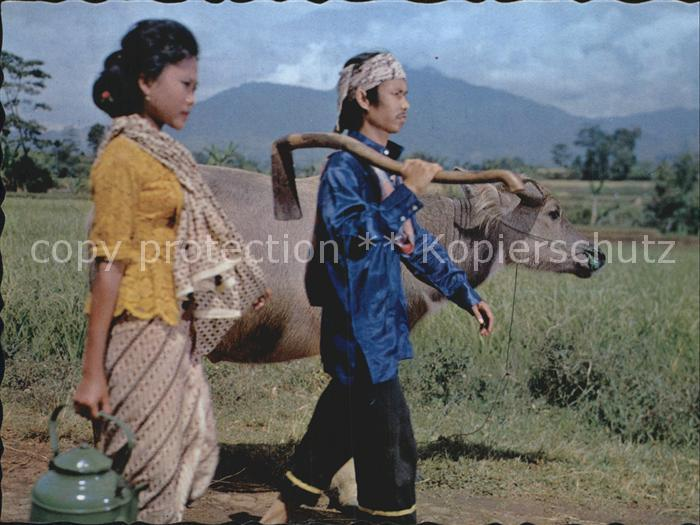Landwirtschaft Farmer and his wife West Java Kat. Landwirtschaft