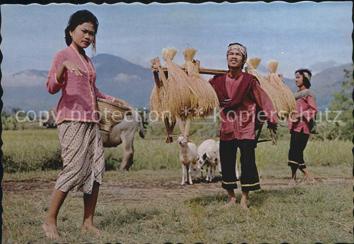 Tanz Taenzer Gondang Dance West Java