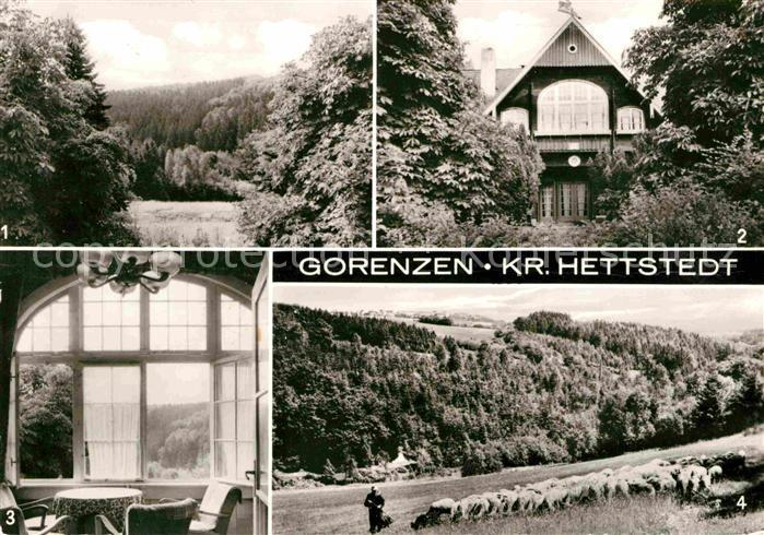 Gorenzen Hagen Jugendherberge Wolfgang Seiffert Lustberg Schafherde Kat. Mansfeld Suedharz