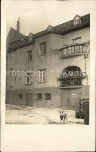 Magdeburg Hausansicht Hund Kat. Magdeburg