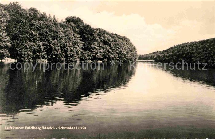 Feldberg Mecklenburg Schmaler Luzin Kat. Feldberger Seenlandschaft
