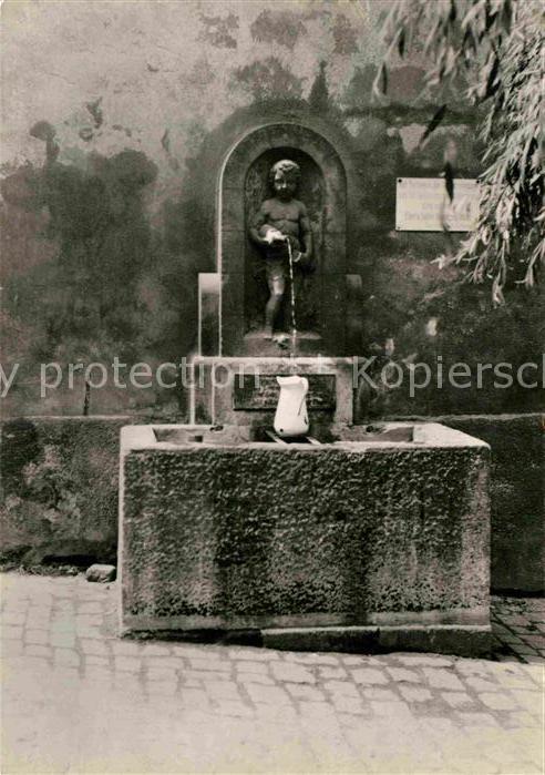 Pirna Erlenpeterbrunnen Kat. Pirna