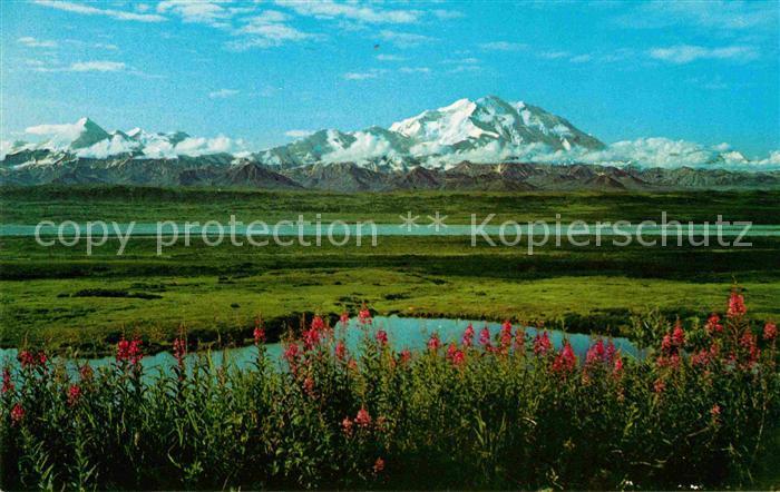 Mount McKinley Alaska McKinley National Park Kat.