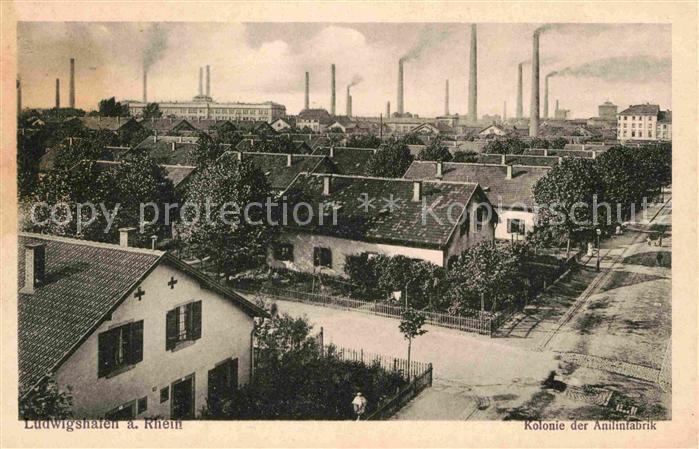 Ludwigshafen Rhein Kolonie Anilinfabrik Kat. Ludwigshafen am Rhein
