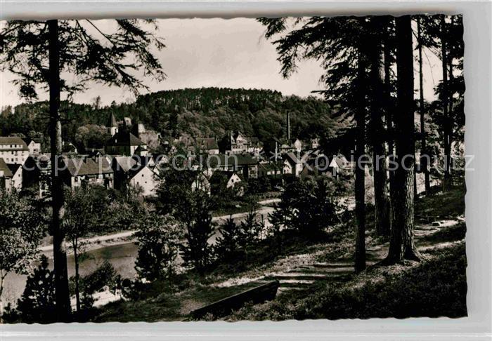 Weissenstein Pforzheim Waldpartie mit Blick auf die Nagold