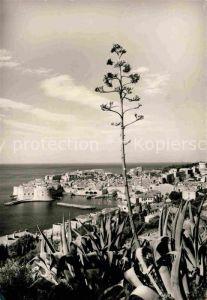Dubrovnik Ragusa Hafen Kat. Dubrovnik