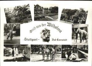 Cannstatt Wilhelma Tierpark Kat. Stuttgart