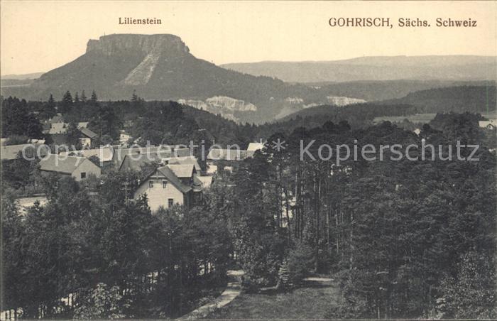 AK / Ansichtskarte Gohrisch Panorama mit Lilienstein Tafelberg Elbsandsteingebirge Kat. Gohrisch