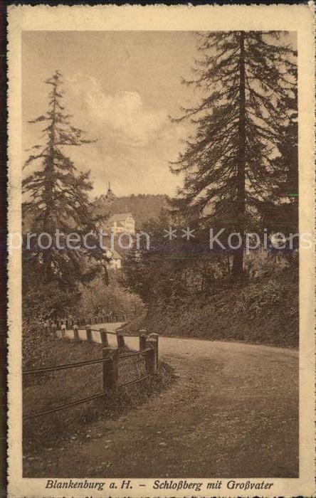 AK / Ansichtskarte Blankenburg Harz Schlossberg mit Grossvater Kat. Blankenburg