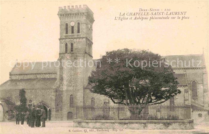 AK / Ansichtskarte Chapelle Saint Laurent La Eglise Aubepine phenomenale sur la place Kat. La Chapelle Saint Laurent