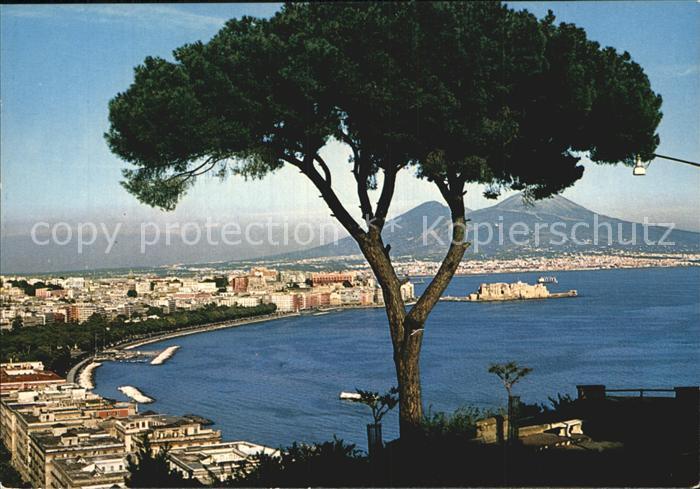 AK / Ansichtskarte Napoli Neapel Panorama Vulkan Vesuv Kat. Napoli