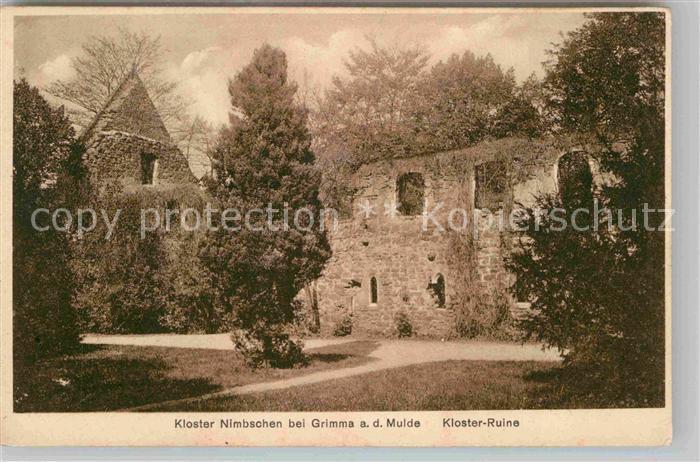 AK / Ansichtskarte Nimbschen Kloster Ruine