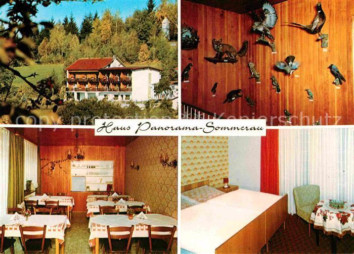 AK / Ansichtskarte Sommerau Lohberg Haus Panorama Gaestehaus Fremdenzimmer Tierpraeparate Kat. Lohberg