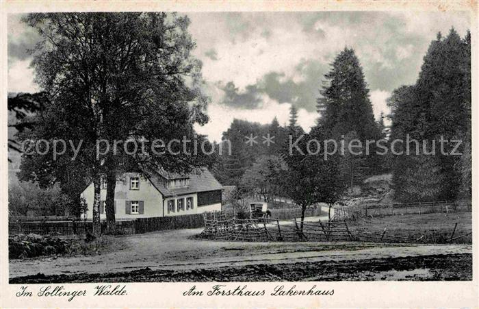 AK / Ansichtskarte Solling Bodenfelde Forsthaus Lakenhaus Sollinger Wald Kat. Bodenfelde