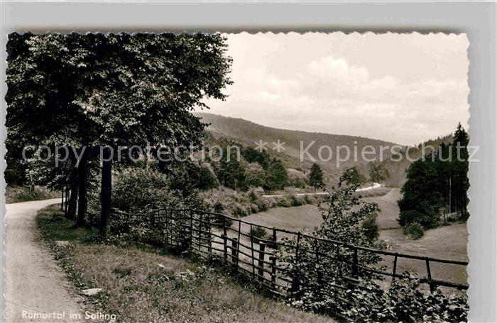 AK / Ansichtskarte Holzminden Weser Rumortal Solling Kat. Holzminden