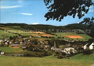 AK / Ansichtskarte Wiemeringhausen Panorama Kat. Olsberg