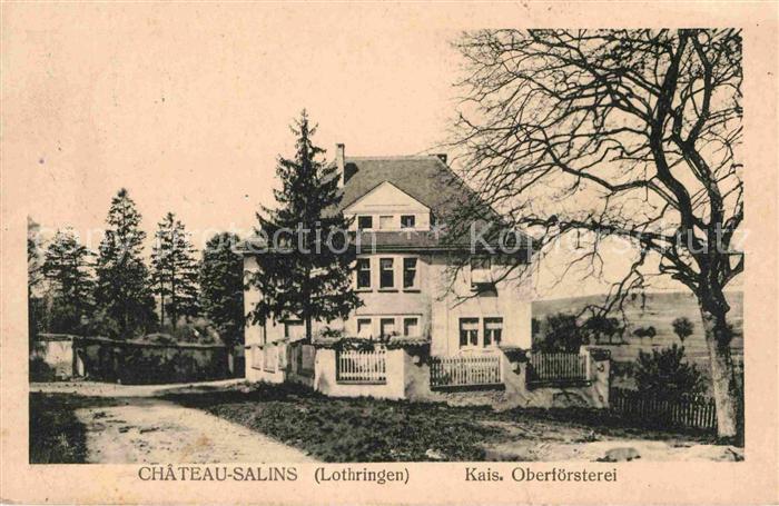 AK / Ansichtskarte Chateau Salins Kais Oberfoersterei Kat. Chateau Salins