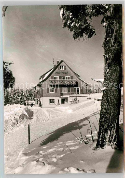 AK / Ansichtskarte Kniebis Freudenstadt Haus Tanneck Kat. Freudenstadt