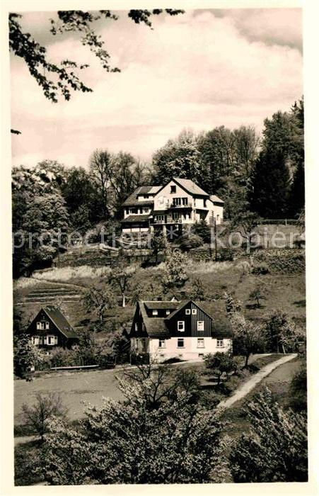 AK / Ansichtskarte Lindenfels Odenwald Haus Luginsland Kat. Lindenfels
