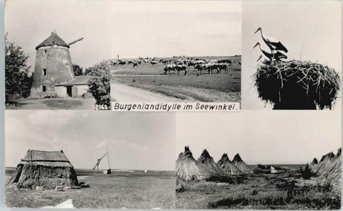 Burgenland Burgenland Seewinkel x /  /