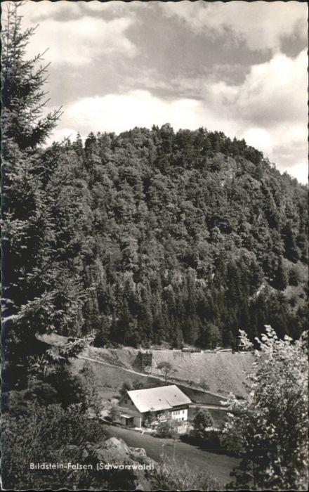 AK / Ansichtskarte Bildstein-Felsen  *